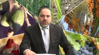 Tu Bishvat - Seder Brachot