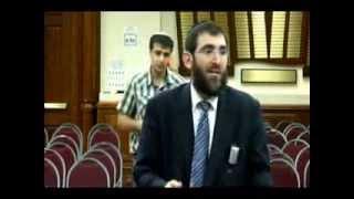 Torah Our Island Of Sanity