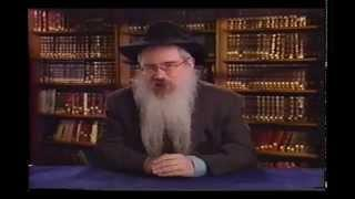 The 7 Noahide Laws