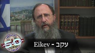 Weekly Torah Portion: Eikev