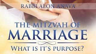 Love And Marriage - What's it's purpose?