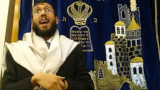 Why Yosef Hasadik was raised differently? in Farsi