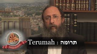 Weekly Torah Portion: Terumah