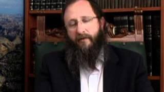 Weekly Torah Portion: Bo