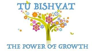 Tu Bishvat - The power of growth
