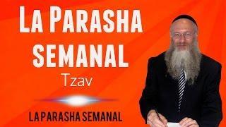 La Parasha semanal - Tzav