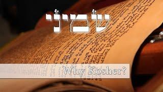 What's the deal with Kosher animals?