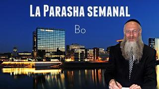 La Parasha semanal - Bo