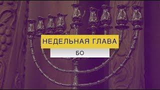 """Недельная глава """"Бо"""" на Джуури"""