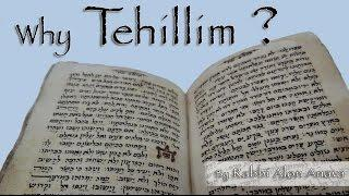 Why is it so special to read Tehillim with a group?