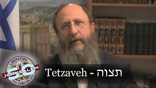 Weekly Torah Portion: Tetzaveh