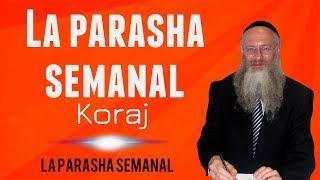 La parasha semanal - Koraj