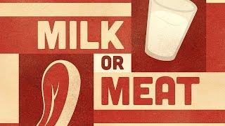 Why do we wait six hours between meat and milk?