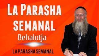 La Parasha semanal - Behalotja