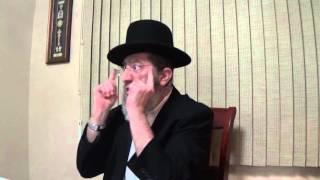 Shalom Bait & Snake